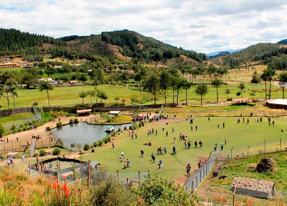 Granja de Porcon Cajamarca